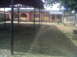 Two Units Of 2 Bedrooms Bungalow For Sale