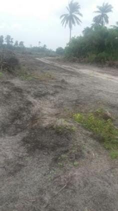 Cheap dry lands for sale in Bogije, Ibejulekki
