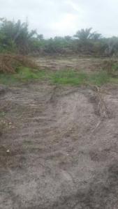 Cheap dry lands for sale in Bogije, Ibejulekki