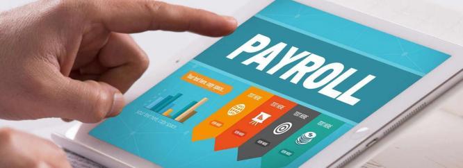 Payroll ERP Software Nigeria
