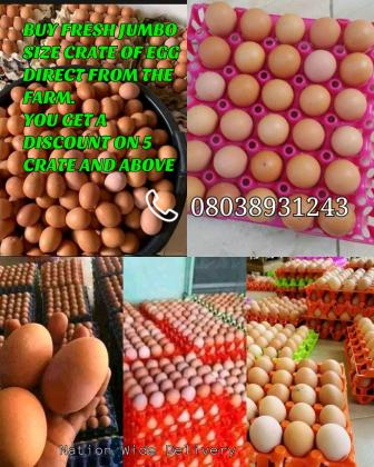 I Need Crate of Eggs direct from the farm just contact 07034210182